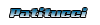 Patitucci Desenvolvimento WEB